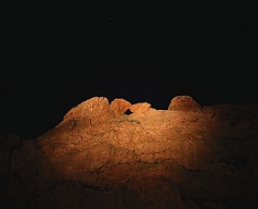 Camels In The Moonlight