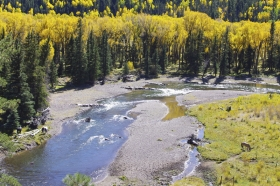Autumn Along The Conejos River #1