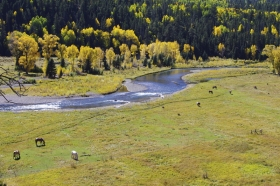 Autumn Along The Conejos River #2